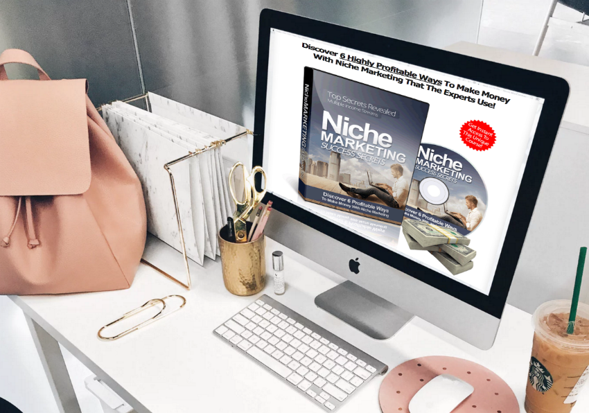 """Niche Marketing Success Secrets Course"""
